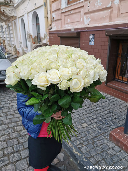 букет 101 троянда фото