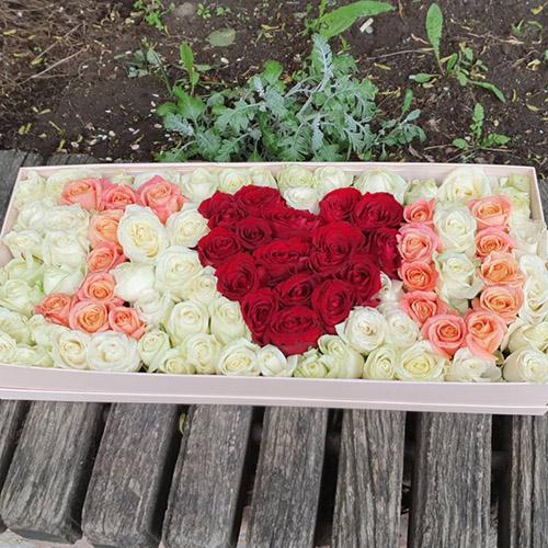 101_ROSES_I_LOVE_YOU (19)